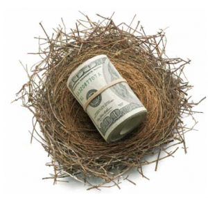 Money in a Bird's Nest